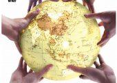 中资银行海外杏鑫总代理信贷业务的环境和社会风险管理表现及分析